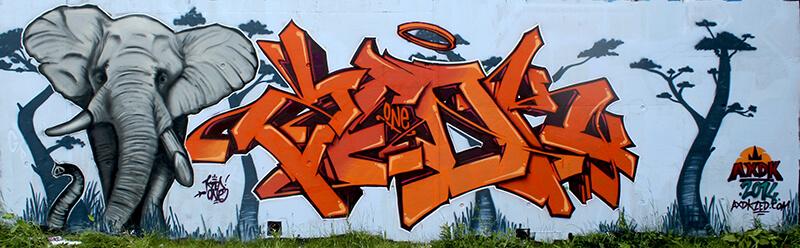 Peinture Safari de Kzed Axdk - Amiens Graffiti Décoration