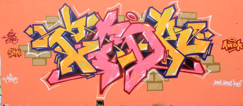 "kzed axdk - dedicace ""Shun""- Amiens Graffiti"