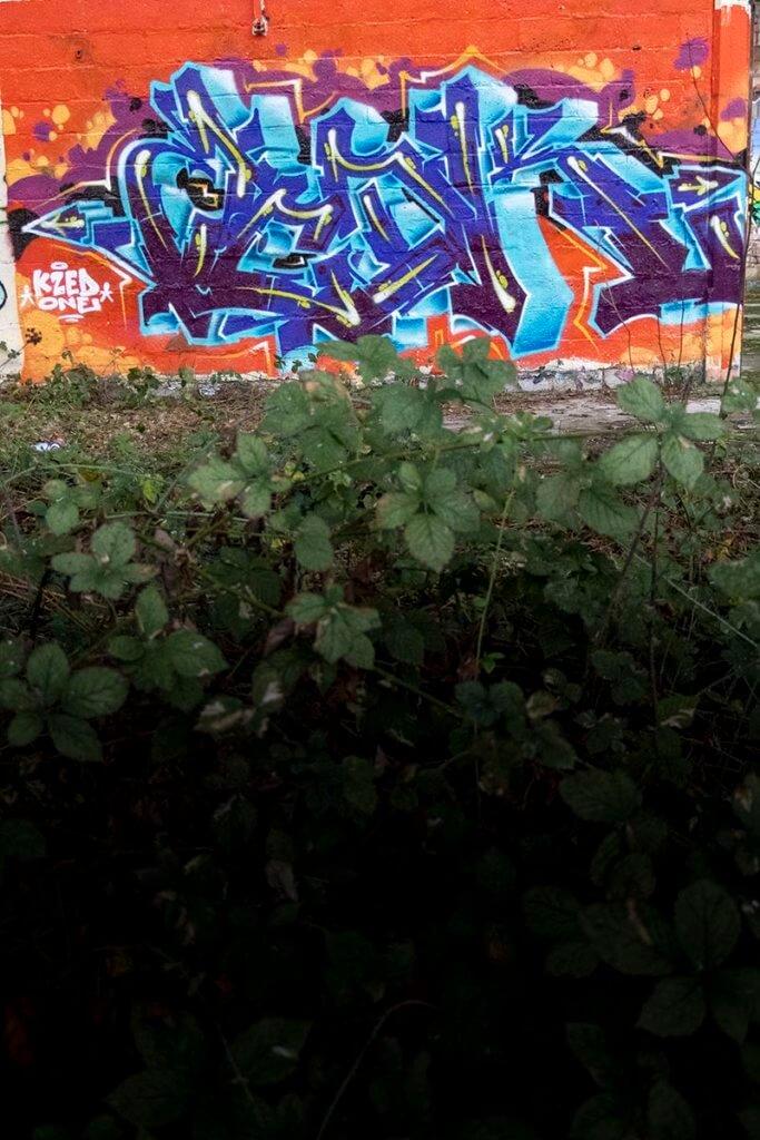 Graffiti de Kzed (zedk) amiens decoration peinture fond orange lettrage bleu
