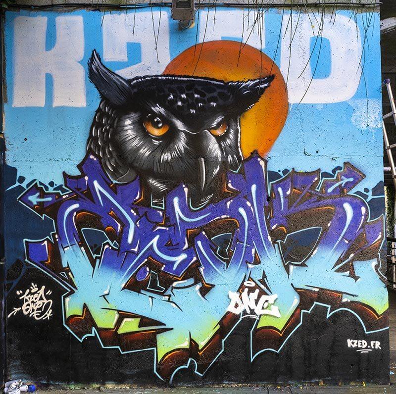 Hibou-kzed-zedk-amiens-graffiti-streeart-decoration