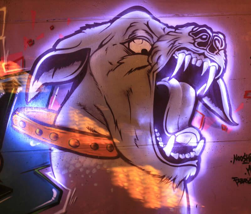 kzed_graffiti_amiens_decoration_lightpainting_dog