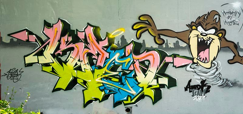 TAZ-Naugthy_By_Nature_Kzed_zedk_amiens_graffiti_decoration_streetart_strurnaart_art