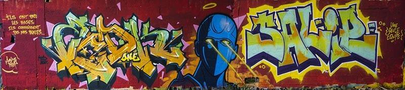 Kzed_zedk_amiens_graffiti_urbanart_streetart_Kzed_Salie_pas_les_bases